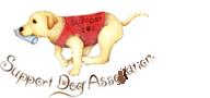 特定非営利活動法人|奈良県生駒市にある介助犬・聴導犬の育成団体